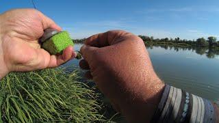 ФЕРМЕНТИРОВАННАЯ КУКУРУЗА - залог УСПЕХА  /  Рыбалка это жизнь