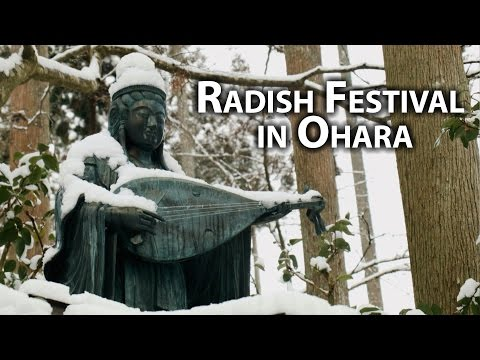 Kyoto Event: Daikon Celebration at Sanzen-in (Hatsu Uma Daikondaki)