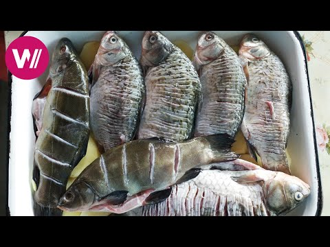 Danube Delta - Living of Fishing and Ones Own Vegetables | What's cookin'
