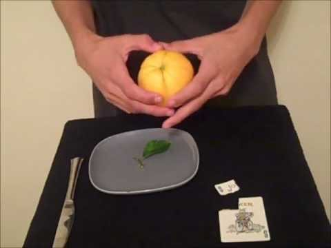 Card to Lemon/Orange Trick Revealed
