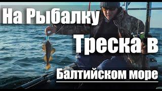 Ловля трески Балтийское море мыс Таран На Рыбалку