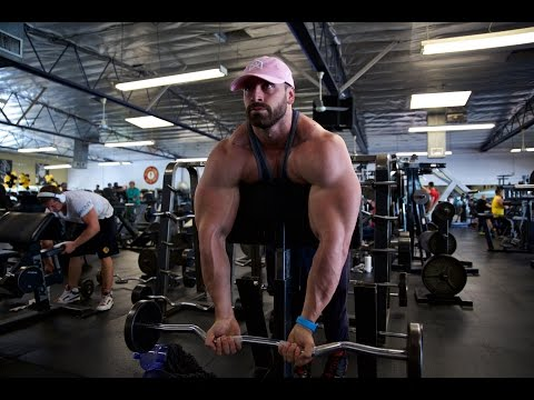 Biceps only | Full Routine | Big Arms