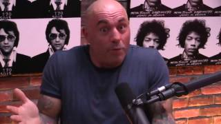 Rogan Makes a Case For Universal Basic Income