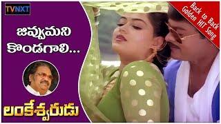 Jivvu Mani Kondagali Video Song || Lankeshwarudu Telugu Movie Songs || Chiranjeevi || Radha || TVNXT
