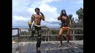 TOADAS AMAZONICA