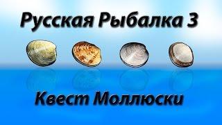 Русская Рыбалка 3.99 Квест Моллюски