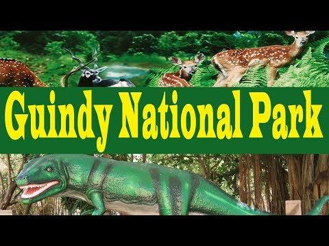 Chennai Famous Guindy National Park | snake park