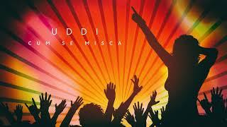 UDDI - Cum se misca