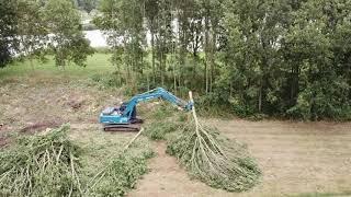 Bomen kappen Camping Waterhout