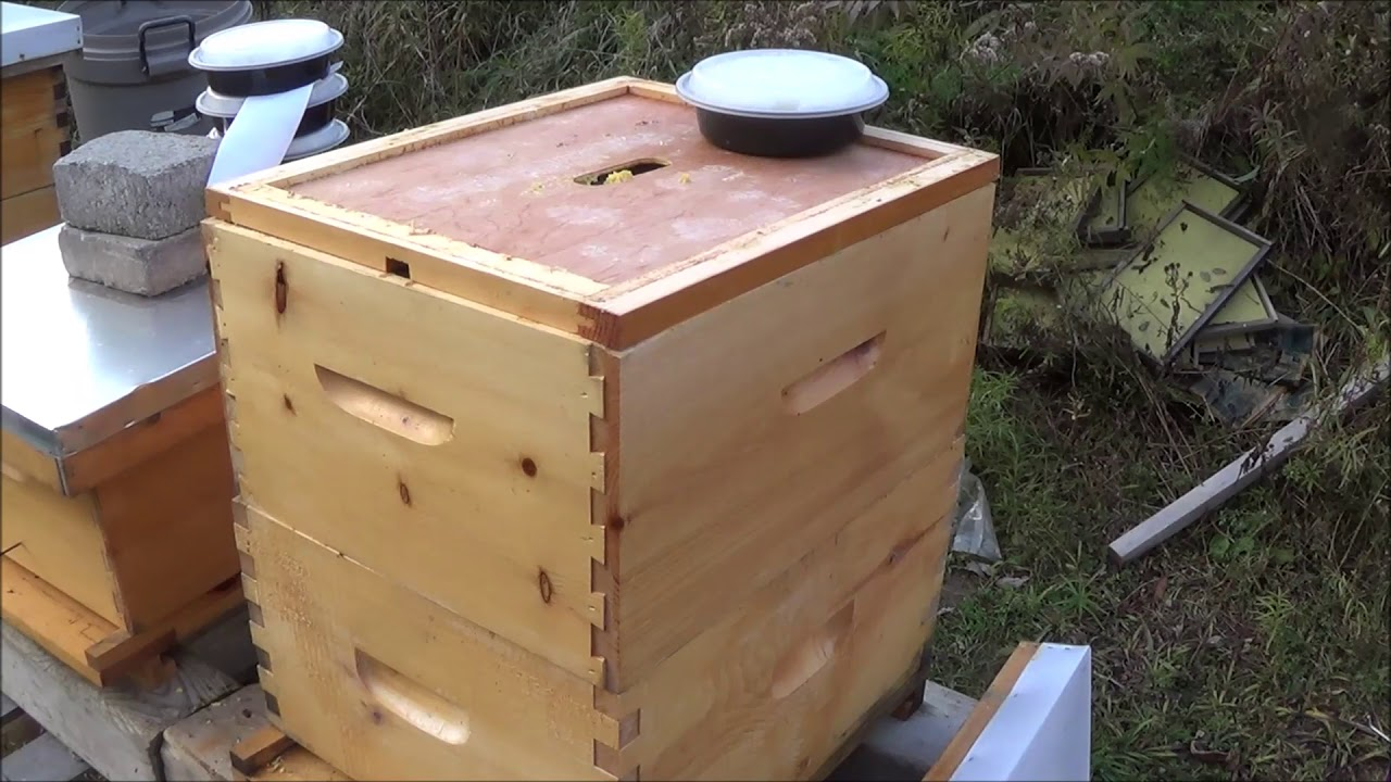 d891831e36296 Prepping Bees for Winter. Insulated wraps, Candy, Wood Chips and  Ventilation.
