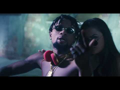 Two tiger's BUMPA (official video)