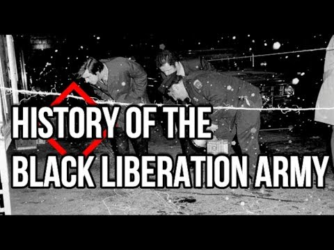 Blood in the Streets of Babylon! Who were the Black Liberation Army?