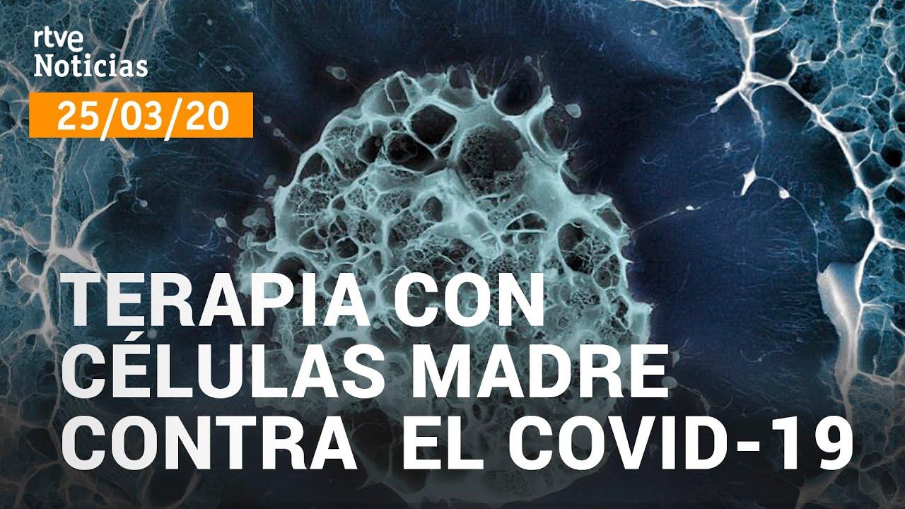 Coronavirus: Un proyecto español para tratar con células madre a los enfermos de coronavirus