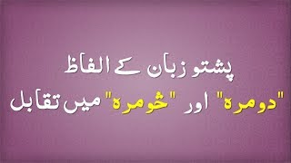 Comparison Between Pashto Two Words Domra and Somra || پشتو زبان کے الفاظ دومره اور څومره میں تقابل