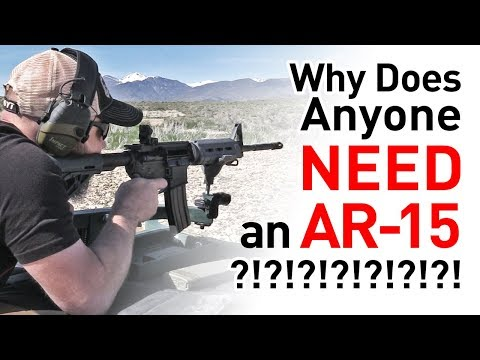 Why Does Anyone Need an AR-15?!