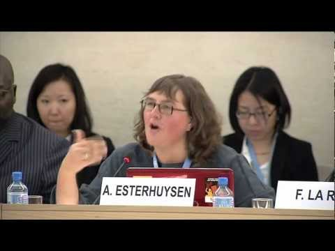 Human Rights Council - Internet Freedom