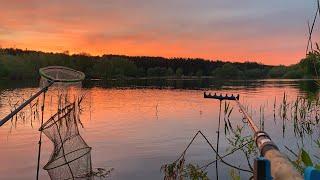 Главное это терпение!!! На острове с ночёвкой. Ловля карася. Рыбалка на фидер 2020.