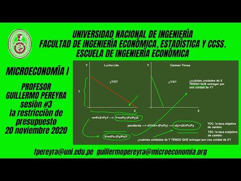 Microeconomía I : La recta de presupuesto