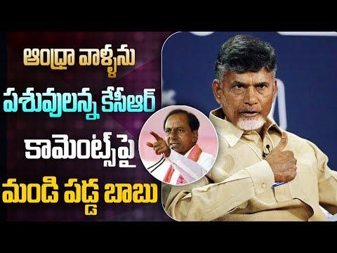 CM Chandrababu Naidu Shocking Comments On  KCR ,YSJagan, Modi | ABN Telugu