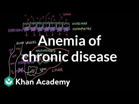 Anemia of chronic disease | Hematologic System Diseases | NCLEX-RN | Khan Academy