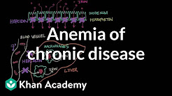 hqdefault - Treatment Of Anemia In Chronic Kidney Disease