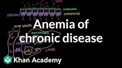 hqdefault - Normochromic Normocytic Anemia Kidney Disease