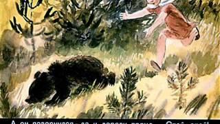 Аришка-трусишка. Рассказы о животных В. Бианки