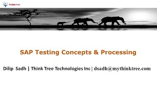 SAP Testing concepts