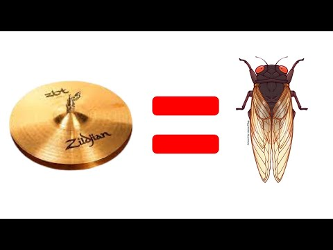 What's Up With The Hi Hat, Bro? (rant)