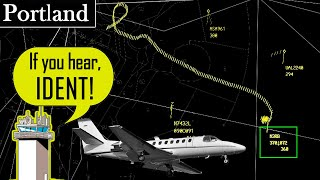 Cessna 560 Citation crashes in Oregon | Spiral Descent from 31,000 feet