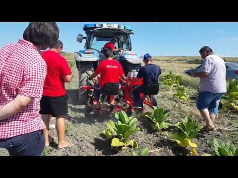 AGRI MARKET BG ФРЕЗА SPAPPERI SA 200,WWW.AGRIMARKETBG.COM