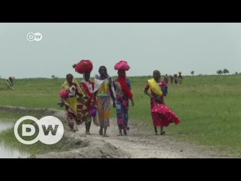Boko Haram conflict threatens food security in Nigeria | DW English