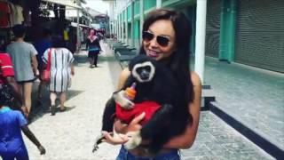 Vlog ❤ Мой Отдых в Тайланде|Смотрите как Я развлекалась на островах ❤Пхукет | Пи❤ Анастасия Лисова