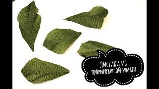 Как сделать листья из гофрированной бумаги
