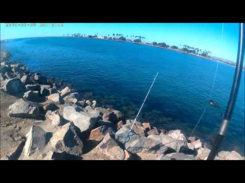 San diego fishing mission beach jetty youtube for Fishing license san diego