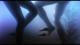 Фильм «Пираньи 3DD» 2012 СМОТРЕТЬ ОНЛАЙН трейлер