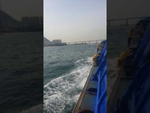 Busan bridge harbor