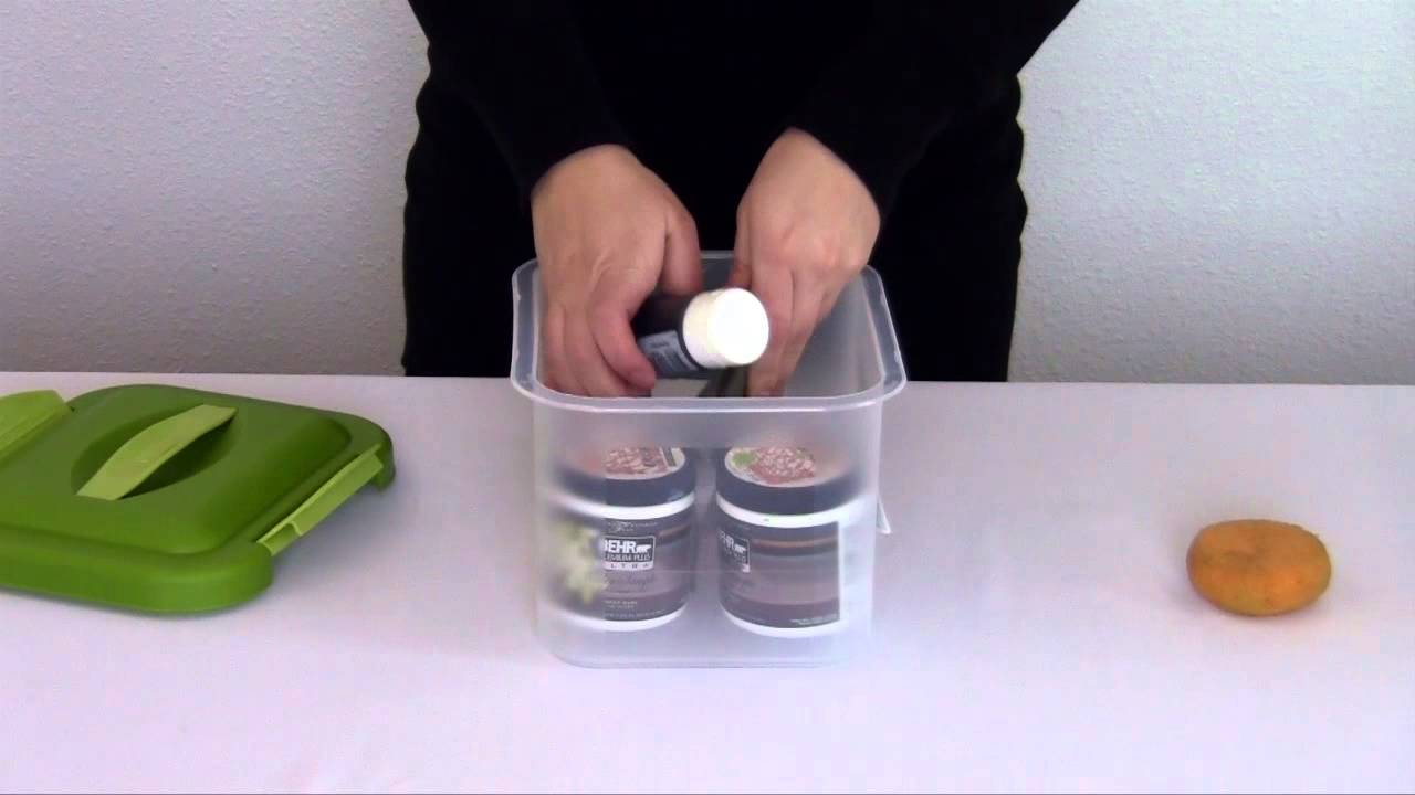Sterilite Small Showoffs Storage Container YouTube