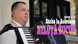 Descarca NELUTA BUCUR - Sarba la acordeon 2