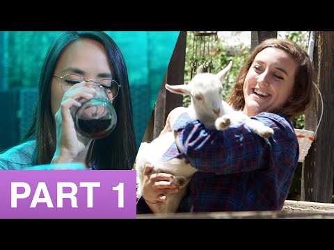 Where Should We Go? • Violet Trip Episode 1