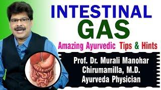 Intestinal Gas | Ayurvedic Remedies \ Prof. Dr. Murali Manohar Chirumamilla, M.D. (Ayurveda)
