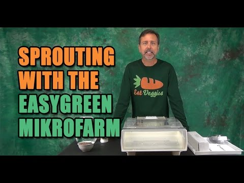 Easygreen Automatic Sprouter Mikrofarm Product Review