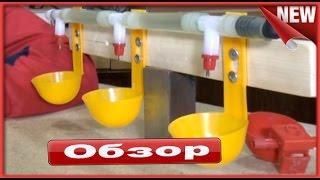 видео Поилки и кормушки для уток своими руками: нипельные, чашечные, автоматические
