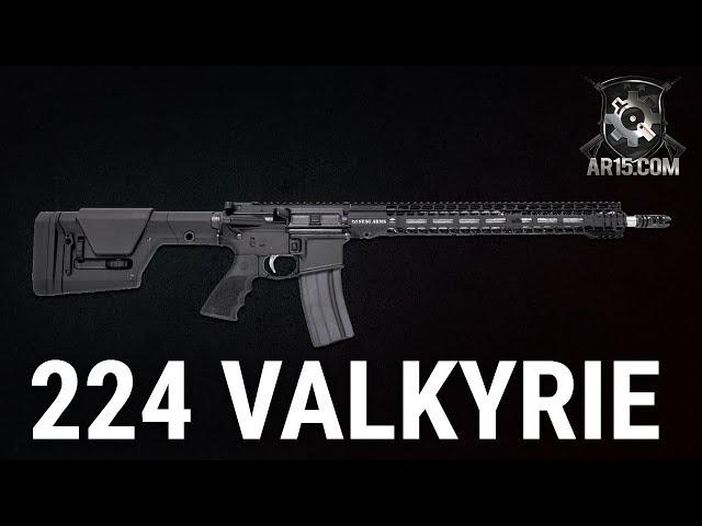 Stag Arms 224 Valkyrie