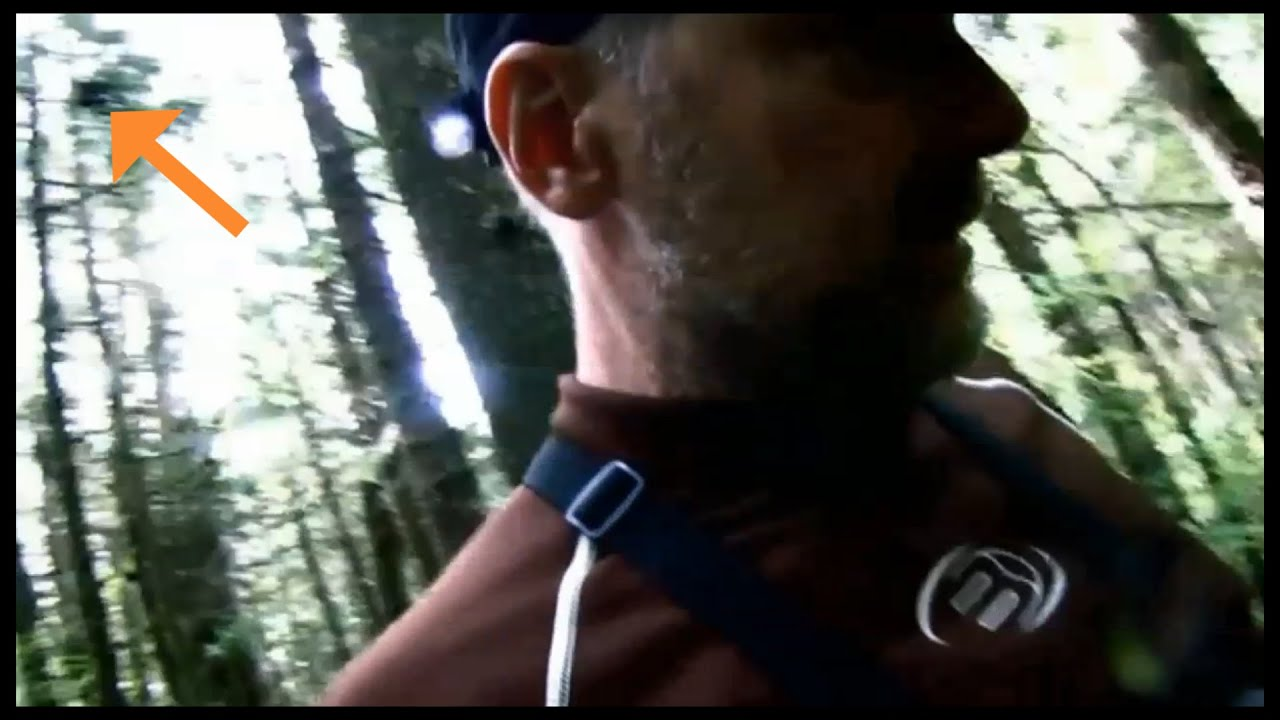 Survivorman - Les Stroud, watched by Bigfoot ...? (ThinkerThunker)