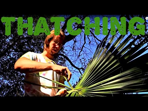 Thatching | How to