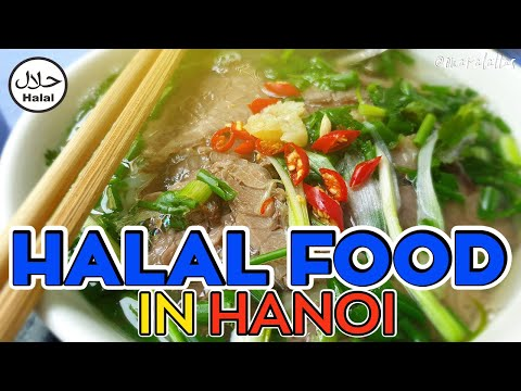 Hanoi 2019 Trip Day 1 Budget Halal Food Room Tour