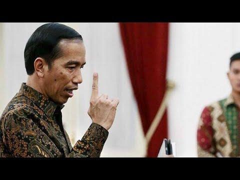 Jokowi Kesal dengan Pernyataan Indonesia akan Punah Mp3