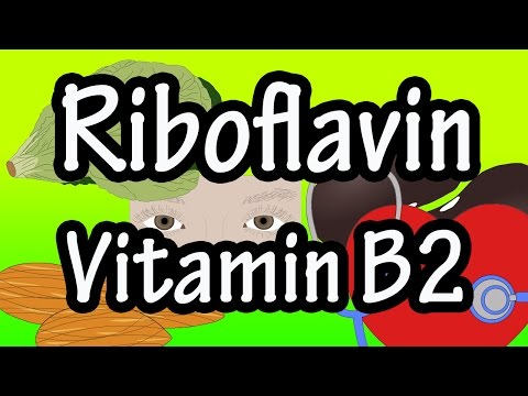 Riboflavin Vitamin B2 Per Day - Foods High In Riboflavin Vtiamin B2 - Benefits Of Riboflavin