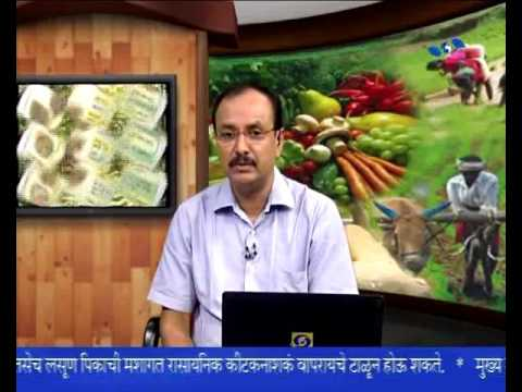 Traditional agricultural development Plan_परंपरागत कृषी विकास योजना